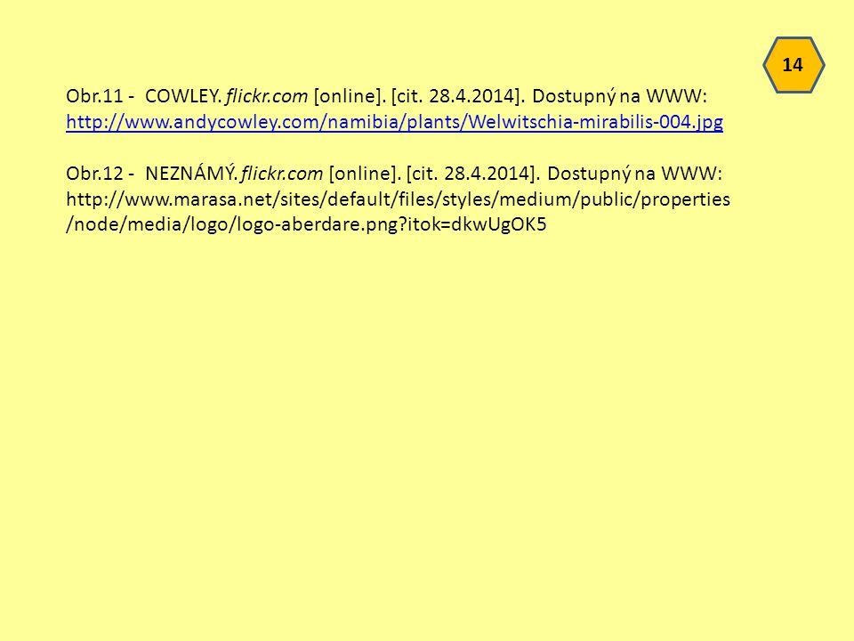 14 Obr.11 - COWLEY. flickr.com [online]. [cit. 28.4.2014]. Dostupný na WWW: http://www.andycowley.com/namibia/plants/Welwitschia-mirabilis-004.jpg.